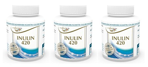 Vita World 3 Pack Vita World Inulin 420mg 3 x 90 Vegi Capsules Made in Germany