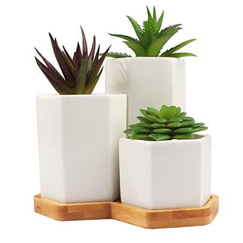 BELLE VOUS Pot de Fleur (Lot de 3) - Blanc, Pot Plante en Céramique Hexagonaux pour Les Plantes Grasses avec Trou de Drainage et Plateau en Bambou - Mini Pots de Fleur pour Bureau Décoration de Table