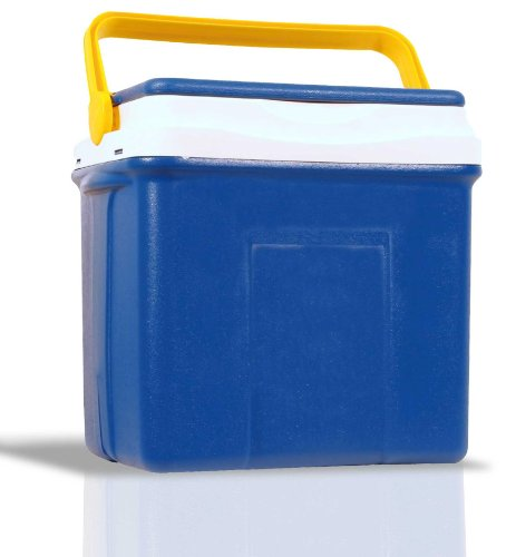 FABOSS Borsa FRIGO Termica GHIACCIAIA Portatile Box 25 Litri Mare Campeggio Viaggio 935016