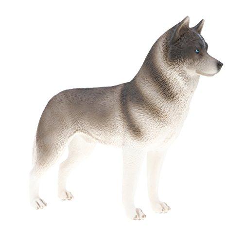 MagiDeal Juguete Realista Figura de Animales Salvajes de Imitación Plástico Modelo de Caballo/Bulldog/Avestrez/Cocodrillo - Husky Gris
