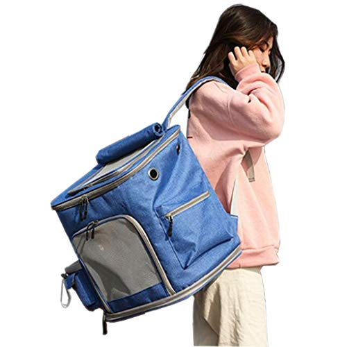 YULAN Folding Pet Box Cage Breathable Cat Dog Portable Backpack Transport Travel Car Out Of The Consignment 4 Color 38 * 31 * 39cm (Color : Blue)