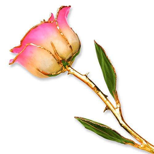 Long Stem 24k Dipped Gold Trim White Pink Rose With Gift Box