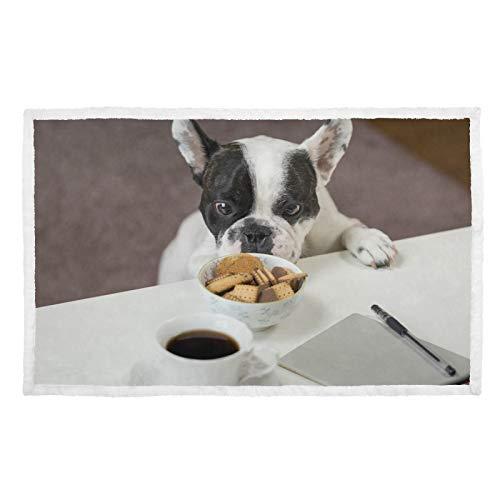 Hengpai Manta para mascotas con diseño de bulldog francés y texto en inglés 'Steal Galletas'