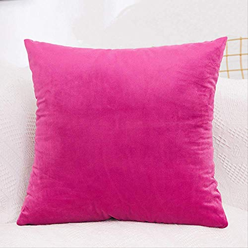 XSHIYQ Velvet Cushion Cover Pillowcase Solid Color Pillow Case Sofa Throw Pillows Room Pillow Cover Decorative 40 * 40cm Rose Red