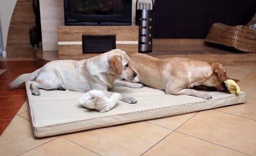 tierlando Carlos Ortho-Medic Orthopädische Hundematte Kunstleder Visko Hundebett Matratze Größe: XXL - 150x100cm - CA6   Farbe: 05 Creme