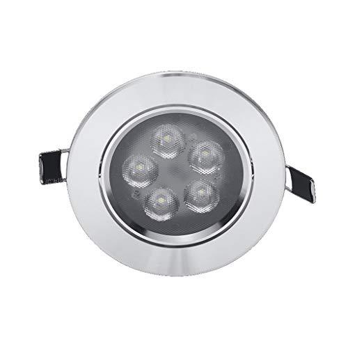 XXT Proyector LED lámpara de Techo del Techo del Pasillo de la Sala de Estar 5W6W8W empotrada Reflector de la MAZORCA Downlight (Color : Warm Light, Size : LED spotlights 5W)