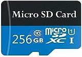 Tarjeta de memoria Micro SD de 128 GB / 256 GB / 512 GB / 1024 GB con adaptador gratuito, tarjeta SDXC clase 10 de alta velocidad (256 GB)