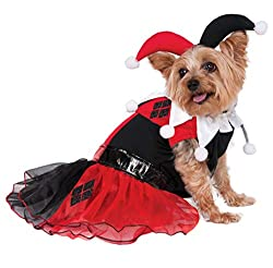 classic Harley Quinn pooch outfit
