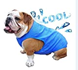 AILITRADE Dog Cooling Vest, Breathable Cooling Coat Outdoor Anti-heat Summer Blue Jacket Clothes for Medium and Large Pet Dogs