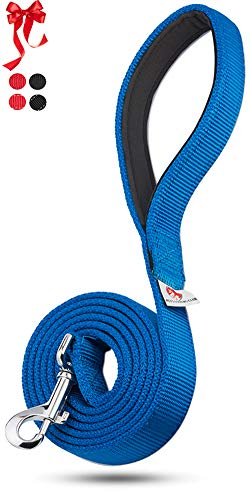 PetsLovers Heavy Duty Leash