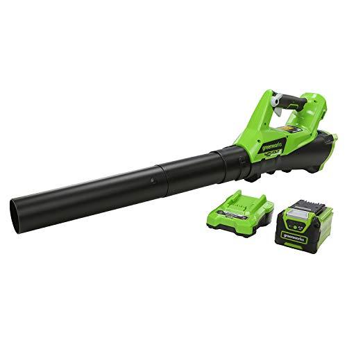Greenworks Tools 40 V Soffiatore Assiale a Batteria G40AB (Li-Ion 40V 177 km/h, Potente Soffiatore Assiale ad Aria con Controllo Elettronico della Velocità con Batteria e Caricabatterie Inclusi)