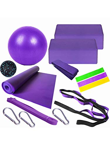 Yoga Set Beginner Equipment(14 Pieces ),2 EVA Foam Soft Non-Slip Yoga Blocks, 10 inch Fitness Yoga Ball, Stretch Strap, 3 Resistance Loop Bands Exercise, Yoga Cotton Strap, Massage ball (Purple)