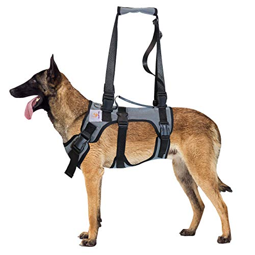 Pet Friendz Dog Lifting Harness for Front and Rear Legs - Dog Sling for Front and Back Legs, Rehabilitation Sling Harness, Dog Lift, Hip Support Harness to Help Lift Dogs Front and Rear - Medium Breed