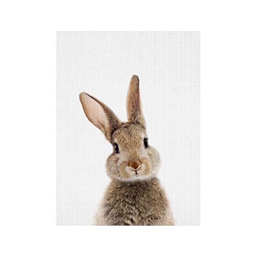 bdrsjdsb Niedlichen Tier Kaninchen Leinwand Poster Kein Rahmen Malerei Kunst Büroraum Cafe Wandbild 1# 30 * 40 cm