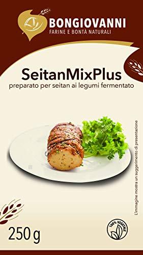 Seitan mix plus (preparato per seitan ai legumi fermentato) 250g