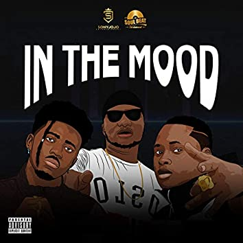 IN the Mood (feat. Kwesi Slay & S Gee)
