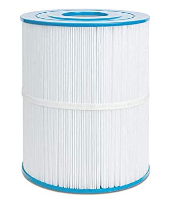 Futrue Way Hot Tub Filter Replacement for Watkins 65, 31114, Pleatco PWK65, Unicel C-8465, 65 sq.ft Hot Spring Spa Filter Cartridges, 1-Pack