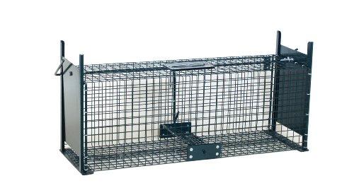Moorland Trappola a Cassetta per catturare Animali vivi Safe 5067 - Gabbia Metallica per lepri, Conigli, Gatti, Volpi.