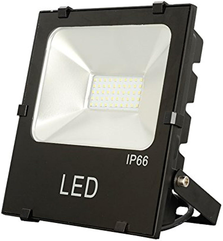JAYLONG Flut-Licht 10W-200W LED, Wasserdichtes IP66, 6500Lm, Super Helle LED-Flut-Lichter Im Freien Für Spielplatz, Garage, Garten, Rasen Und Yard-Modell,100W