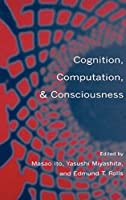 Cognition, Computation, and Consciousness