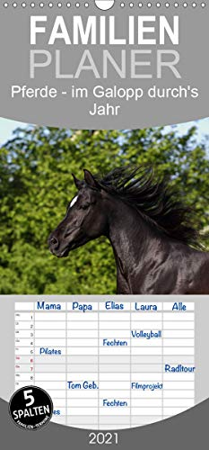 Pferde - im Galopp durch's Jahr - Familienplaner hoch (Wandkalender 2021, 21 cm x 45 cm, hoch)