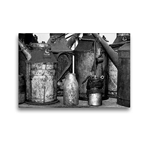 CALVENDO Premium Textil-Leinwand 45 x 30 cm Quer-Format ÖL, Leinwanddruck von Sigrun Düll