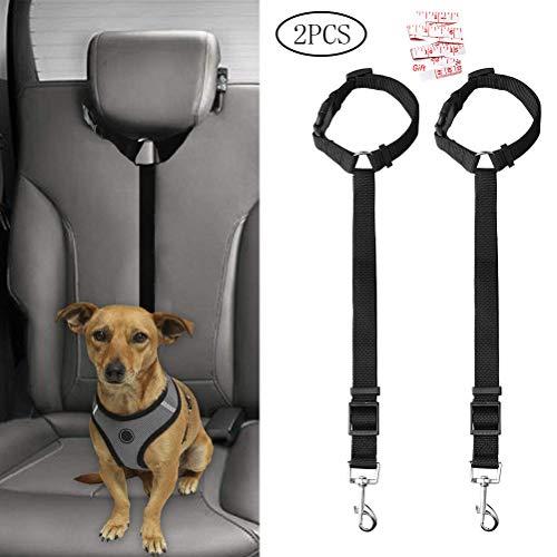 Jinkesi Sicherheitsgurt für Hunde, verstellbar, für Reisen, täglichen Gebrauch, Schwarz, 2 Stück