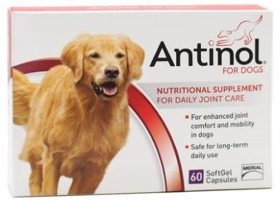 Antinol Joint Care Supplement For Dogs 60 Count