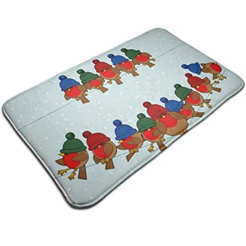 XHYYY Indoor Fußmatte Matte Viele Robin Red Brüste tragen Bunte Türmatte rutschfeste Hundematten für die Tür Outdoor Fußmatte für Badezimmer, vorne, innen und en