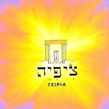 Tzipia