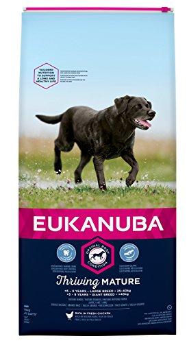 Eukanuba hondenvoeding voor grote rassen, premium droogvoer met vers kip, Band., 15 kg, Mature & Senior grote rassen