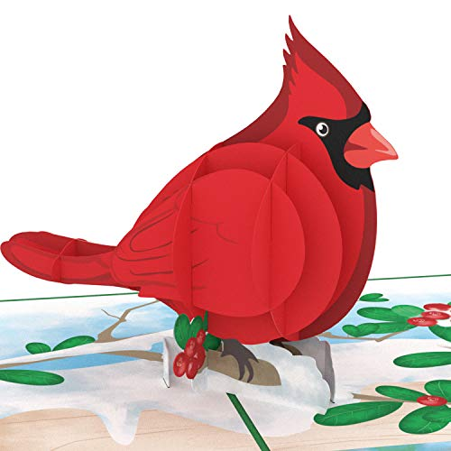 Unipop Cards Cardinal Bird Love Pop Up Cards, Valentines Day Card for Anyone, Lovebirds pop up card, Happy Birthday Card, Mothers Day Greeting Cards, Love Pop Up Card, Anniversary 3D Greeting Cards, (Love Pop Up Card)
