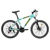 Mountain Bike 21 Speed