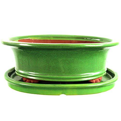 Bonsaischale mit Untersetzer 30.5x24x10.5cm Grün Oval Glasiert