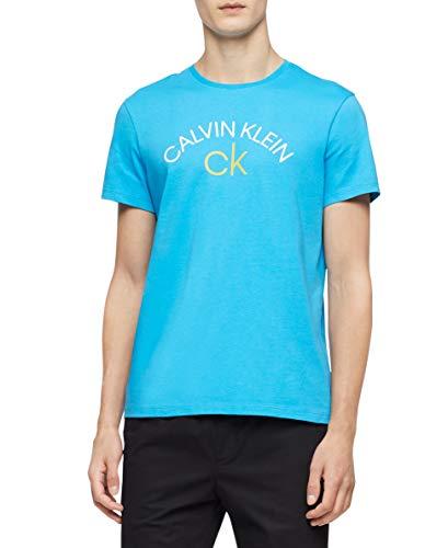 Calvin Klein Men's Short Sleeve Crew Neck T-Shirt, Dresden Blue Summer, Large