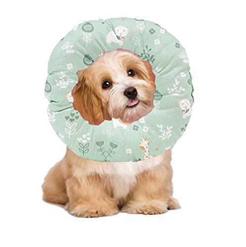 Ducomi Molly Collare per Recupero Gatto Cane Regolabile Collarino Elisabettiano Protettivo Morbido per Animali Domestici per Guarigione delle Ferite Dopo Intervento Chirurgico (XS, Zoo)