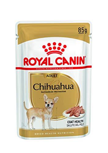 ROYAL CANIN Cibo Umido per Cane Adulto Chihuahua - 1020 gr