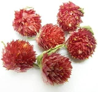 Moyishi 15oz Nature Dried Globe Amaranth Flower Herbal Tea 1 lb