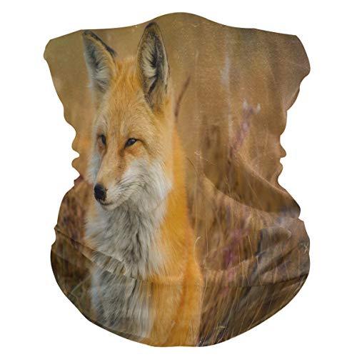Süßer Afrikanischer Wilder Fuchs Gesichtsmaske Schlauchtuch Kopftuch Stirnband Bandanas Kopfbedeckung Halstuch Gesichtsschal Für Männer Frauen Den Sport