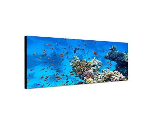 Tela orizzontale in 150x 50cm Mare Riff pesci corallo