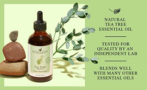 Handcraft Tea Tree Essential Oil - Premium Therapeutic Grade with Premium Glass Dropper - Huge 4 fl. Oz