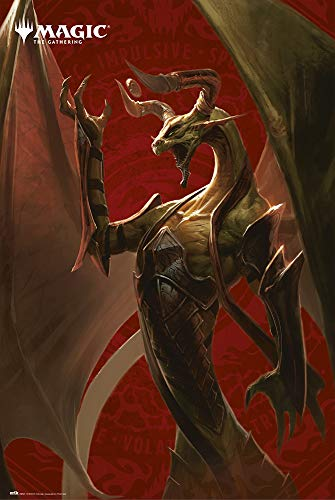 Erik® poster Magic THE GATHERING NICOL