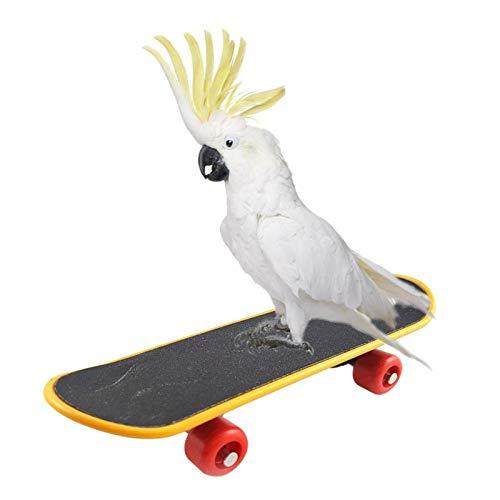 WANGYONGQI Huisdier Vogel Speelgoed Papegaai Speelgoed Grappige Intelligentie Skateboard Speelgoed Stand Perch Speelgoed Voor Parakeet Cockatiels Vogel Training Accessoires