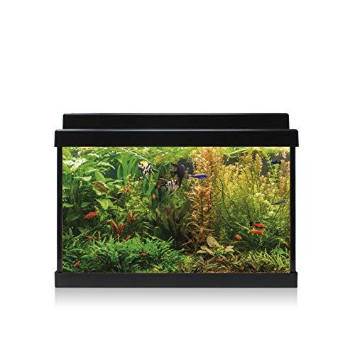 ICA KDI20 Kit Interior Aqualed con Filtro KW200, Negro