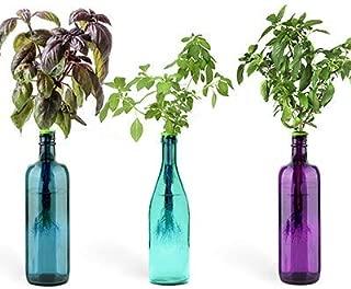 Urban Leaf - Windowsill Herb Garden Starter Kit - Self Watering Indoor Bottle Garden Kit - incl 3 Types Herb/Flower Seeds - Perfect Unique Gift for Her (or Him!)