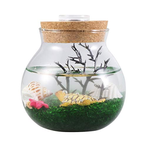 Creative Gifts - Botella creativa de micro paisaje, para pecera, luces LED de color nocturno, decoración de mesa, regalos (tamaño pequeño), diseño de tortuga