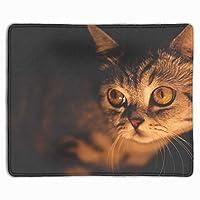 動物の猫は滑り止めのゴム製マウスパッドをカスタマイズしましたゲーミングマウスパッド-11.8インチx 9.85インチ