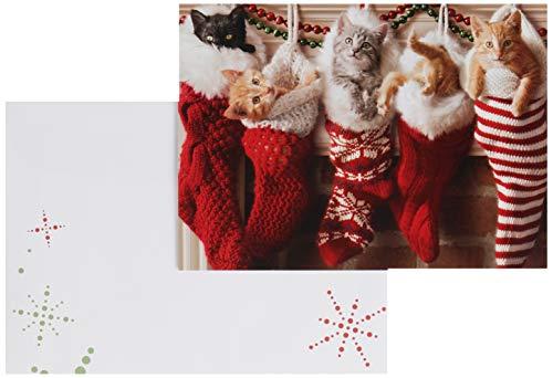Avanti Press Christmas Cards, Stocking Full of Kittens, 10 Count (701154)