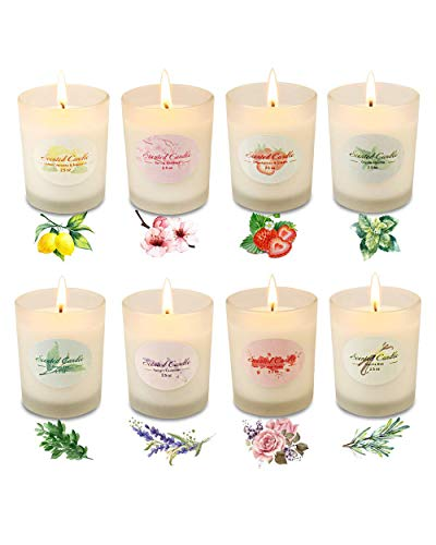 Frosted Jar Scented Candle Sets Gifts for Women Natural Soy Wax...