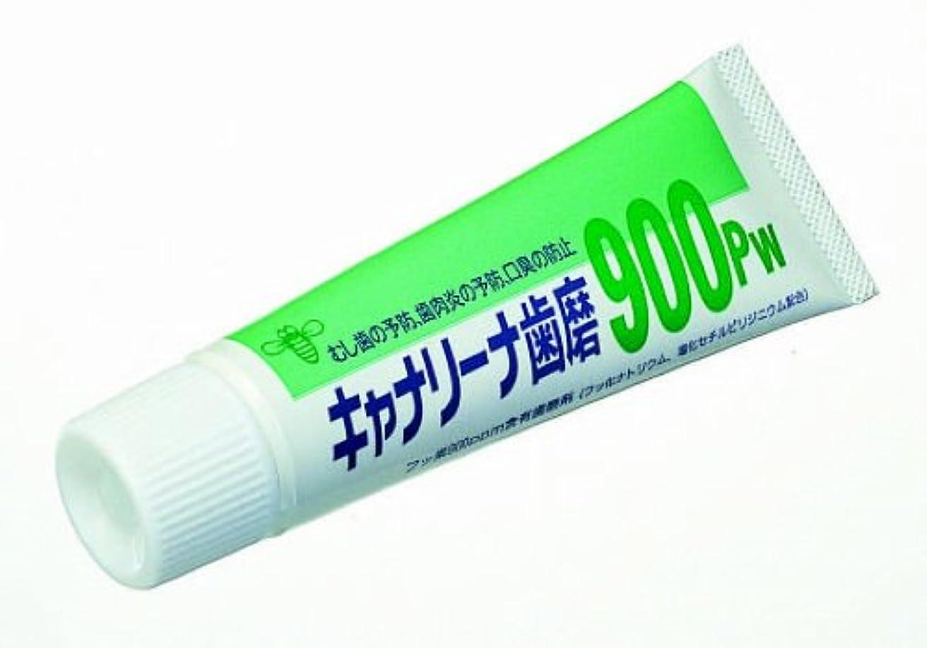 従来のペルソナ歯キャナリーナ900pw 10本入り